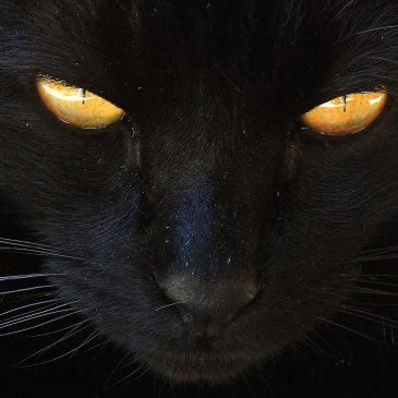 Črna magija